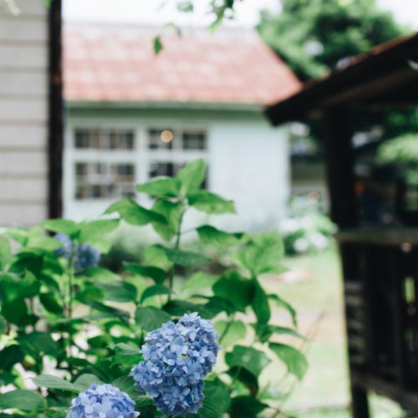 旧女学校跡巡りin熊本