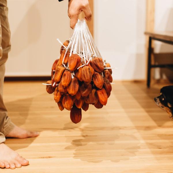 干し柿とうどんと展示とスイートスプリング